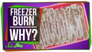 Truth  Behind Freezer Burn