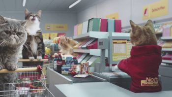 Meme Cats Go Grocery Shopping In German Commercial