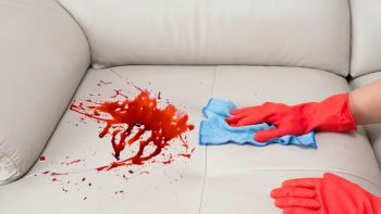 HowToBasic Shows How To Remove A Stain From A Sofa