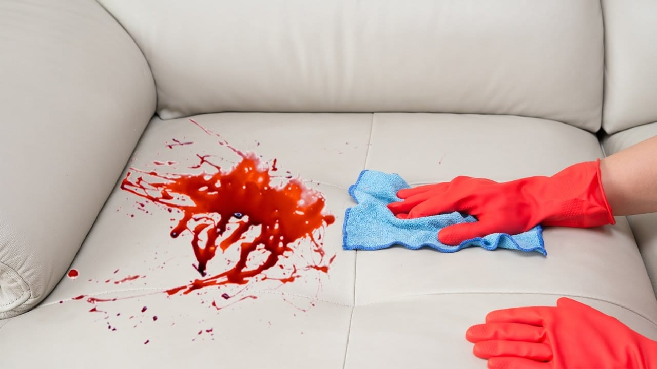 Howtobasic Shows How To Remove A Stain From A Sofa Viral