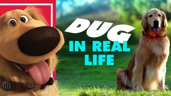 Pixar's Dug the Talking Dog In Real Life