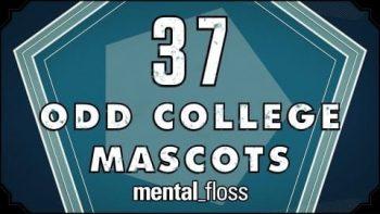 37 Odd College Mascots