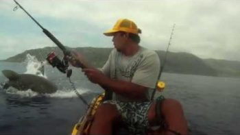 'Chompy The Shark' Tries To Steal Kayak Fisher's Catch
