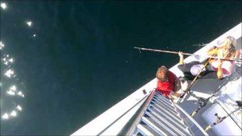 Massachusetts Fishermen Catch 920-pound Tuna
