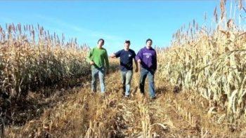 Farmer Style Gangnam Style Parody Music Video