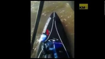 Paddle Boarder Rescues Puppy Stranded At Sea
