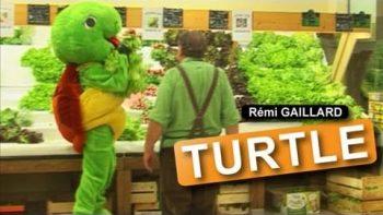 Man Wearing Turtle Mascot Suit On Roller Skates Steals Lettuce