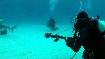 Tiger Shark Nearly Bites Off Scuba-Cameraman's Leg