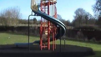 Dog Slides Down Playground Slide On Command