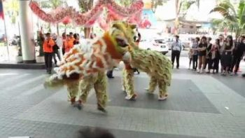 'Tigers' Dance to Party Rock Anthem At Chinese New Year Celebration