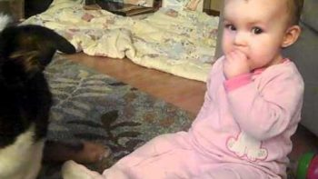 Baby Shares Her Cheerios With Huge Family Dog