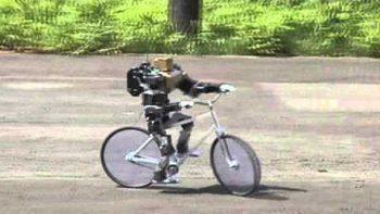 Mini Robot Rides Bicycle