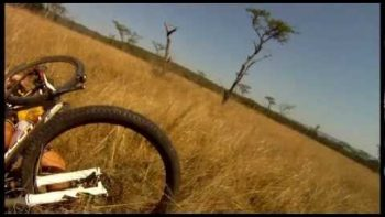 Mountain Biker Hit By Huge Running Antelope