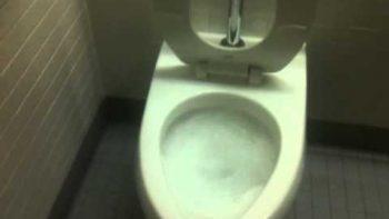 Longest Flushing Toilet