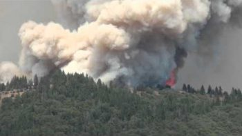 Double Raindbow Famous Bear Vasquez Captures Giant Forest Fire On Camera