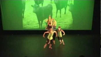 Strange Modern Dance Of Cows Viral Video