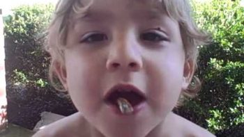 Baby Boy Puts Live Cicadas In His Mouth