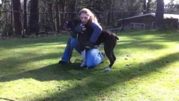 Dog Trainer Gives CPR, Saves Dog's Life