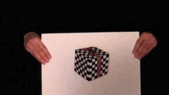 Floating Cube Illusion