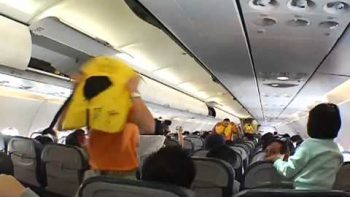 Male Flight Attendant Dance You Can Dance If You Want to – Cebu Pacific Pre Safety Flight