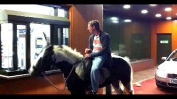 Man Rides Horse To McDonald's Drive Thru
