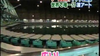 Japanese Pool Makes Heart Shaped Waves