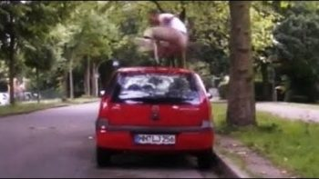 Man Jumps Over Car