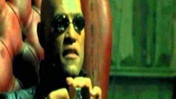 Big Lebowski, The Matrix – Hybrid