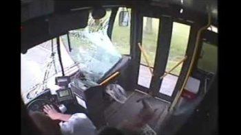 Deer Crashes Through Bus Windshield