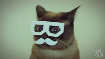 Hipster Cat Dances To Dubstep