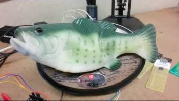 Man Hacks Alexa Into Singing Fish Robot