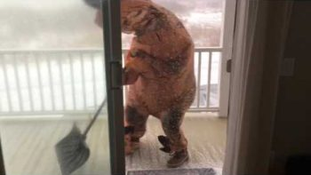 T-Rex Tries To Go Shovel Snow In A Blizzard