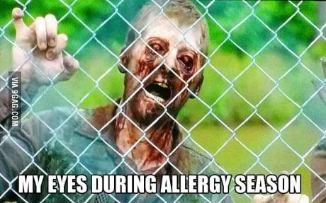 04148027 1 me eyes during allergy season viral viral videos