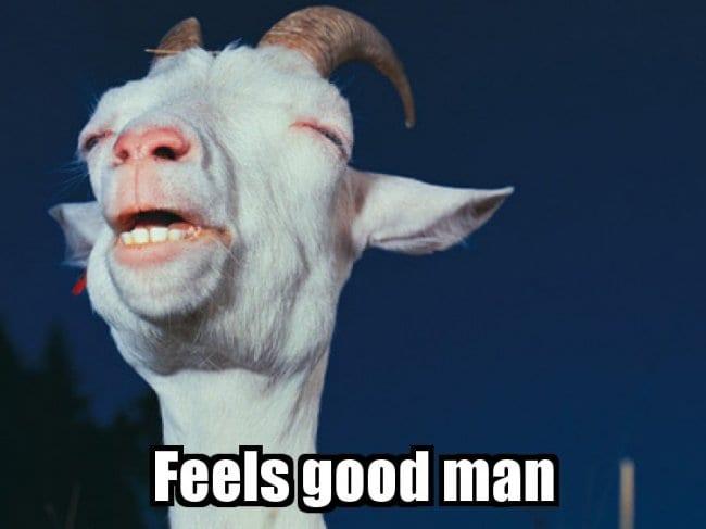 Feels good man – Goat
