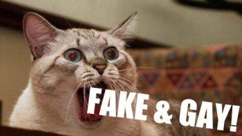 Fake and Gay