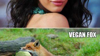 Megan Fox Is Vegan
