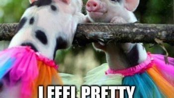 I feel pretty oh so pretty