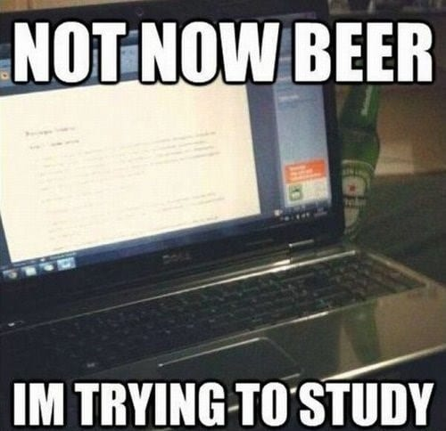 Not now beer – I'm trying to study