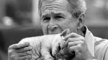 George Bush eating a cat – Your argument is invalid