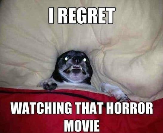 I regret watching that horror movie