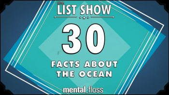30 Things You Didn't Know About The Oceans