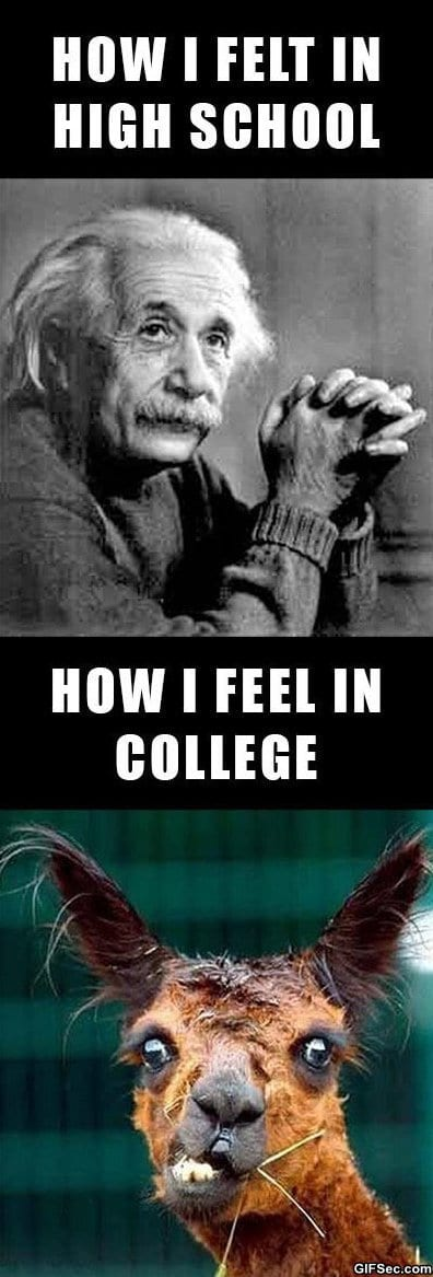 lol-high-school-vs-college