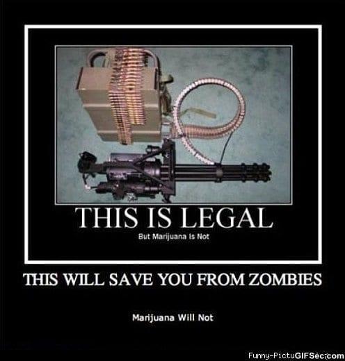 Zombies vs Guns