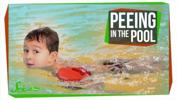 Peeing In The Pool Is More Dangerous Than You Think