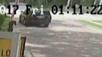 Video Shows Venus Williams' Car Being Struck